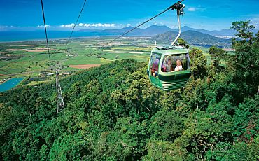 Half and 1 Day Kuranda Skyrail Rainforest Cableway Tours from Cairns