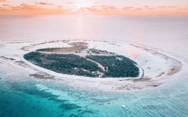 1 Day Lady Elliot Island Package from Hervey Bay