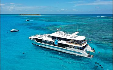 1 Day Lady Musgrave Island Reef Experience Tour from Bundaberg
