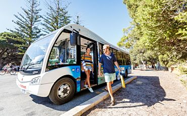 1 Day Discover Rottnest from Perth and Fremantle