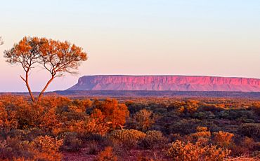 2 Day/1 Night Red Centre Explorer Tour from Ayers Rock to Alice Springs