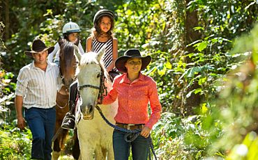 1 Day Nautilus Horse Riding, Fly and Reef Cruise Tour from Cairns