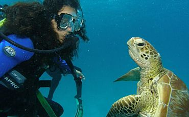 2 Day/1 Night Coral Sea Dreaming Outer Barrier Reef Sailing Tour from Cairns