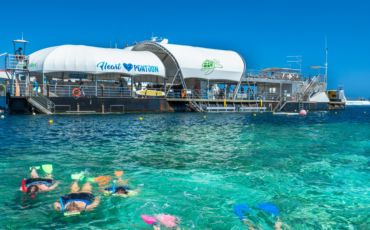 1 Day Outer Great Barrier Reef Adventure at Hardy Reef