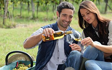 1 Day Hunter Valley Food and Wine Lovers Tour from Sydney