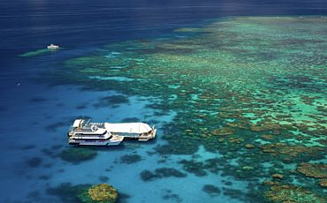 1 Day Great Barrier Reef Adventure from Cairns