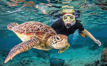 5 Day/4 Night Outer Barrier Reef Encounter from Cairns