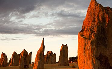 1 Day Pinnacles Desert, New Norcia and Wildflowers Tour from Perth
