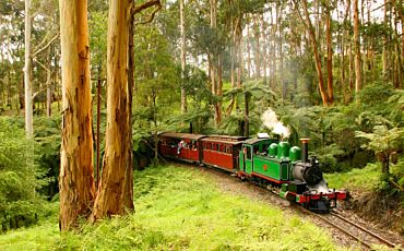 Half Day and 1 Day Puffing Billy Tours from Melbourne