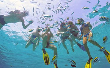 1 Day Outer Barrier Reef Experience from Cairns