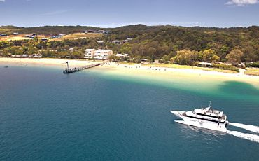 1 Day Tangalooma Dolphin Viewing Cruise with Whale Watching from Brisbane