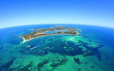 1 Day Rottnest Ultimate Snorkelling Tour from Perth
