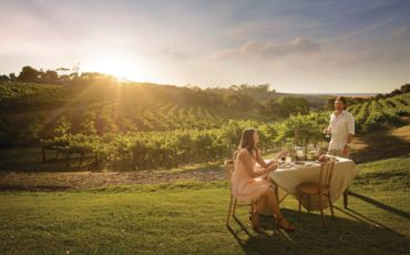 1 Day Barossa Food and Wine Experience Tour from Adelaide