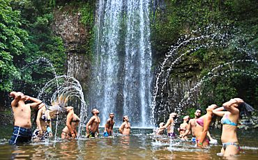 1 Day Atherton Tablelands Barefoot Tour from Cairns