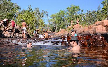 1 Day Wallaroo Litchfield Park Tour from Darwin