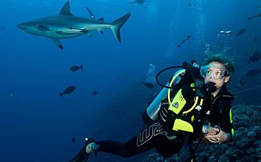 7 Day/7 Night Spirit of Freedom Scuba and Snorkel Tour from Cairns