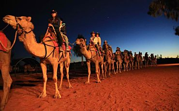 2.5 Hour Camel to Sunset Tour from Ayers Rock Resort
