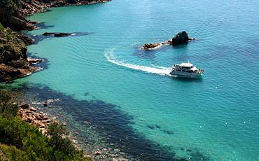 1 Hour Cape Woolamai Eco Cruise from Phillip Island