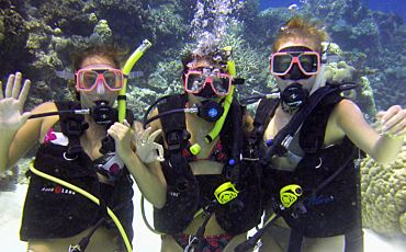 2 Day Moore Reef, Kuranda and Rainforestation Tour from Cairns