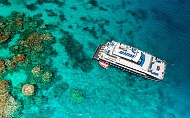 1 Day Calypso Outer Reef Snorkel and Dive Tour from Port Douglas