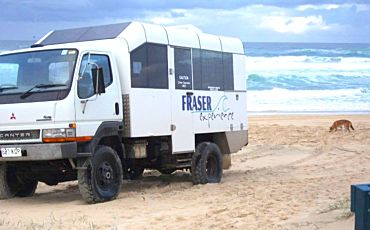 1 Day Fraser Experience Tour from Hervey Bay