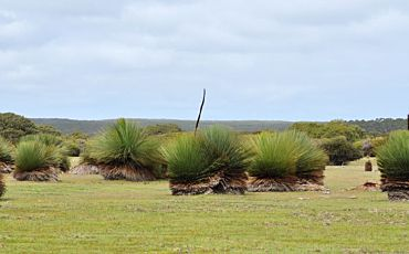 1 Day Flinders Chase Small Group Tour from Kangaroo Island