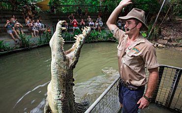 Half Day Hartleys Crocodile Adventure from Cairns