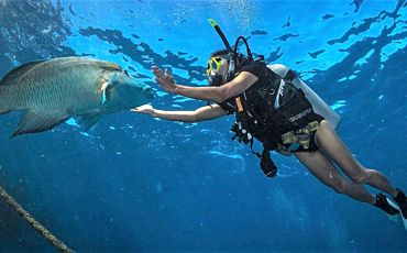 7 Day/6 Night Outer Barrier Reef Encounter from Cairns
