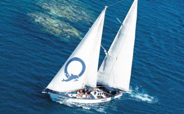 1 Day Ocean Free Sailing Adventure to Green Island from Cairns
