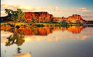 1 Day Palm Valley 4WD Tour from Alice Springs