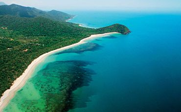 1 Day Cape Tribulation and Daintree Wonder Tour from Port Douglas