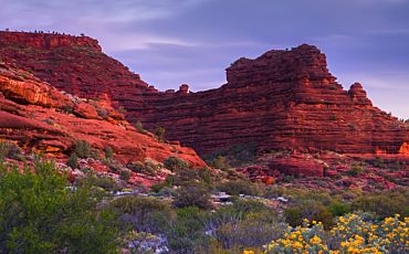 1 Day Palm Valley Outback Safari by 4WD from Alice Springs