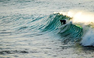 1 Day Around and About Torquay Surfing Tour from Melbourne