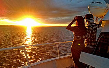 1.5 Hour Twilight Bay Cruise from Phillip Island