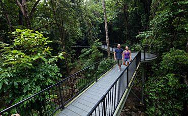 1 Day Adventure Nth Mossman Gorge, Cooya Aboriginal Experience ex Port Douglas