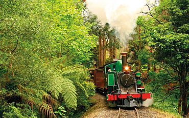 1 Day Puffing Billy Steam Train and Wine Country from Melbourne