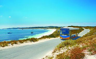 1 Day Rottnest Island Explorer and Discovery Bus from Perth
