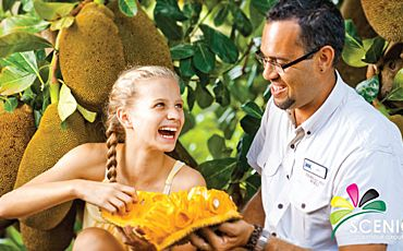 1 Day Currumbin Wildlife and Tropical Fruit World Tour from the Gold Coast